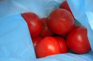 tomato-syukaku0907